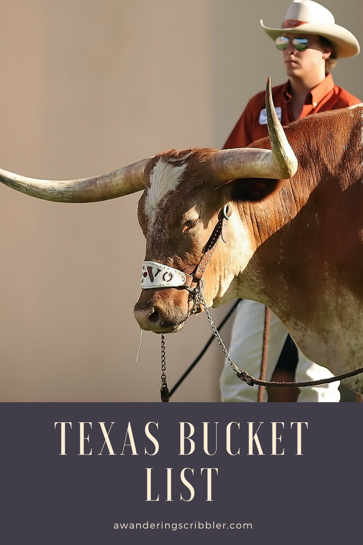 Texas Bucket List
