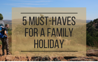 must-haves for family travel